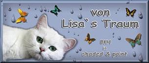 von Lisa's Traum